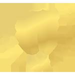 logo-stomat77